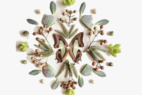 Was für eine Pracht! Kunst aus Blüten und Blättern