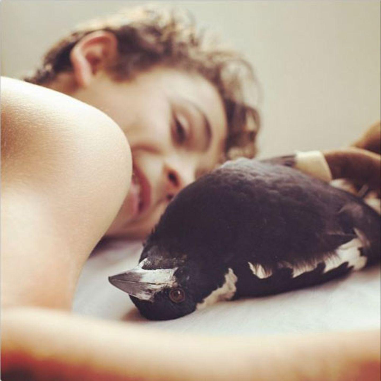 Der zehnjährige Noah rettete Elster Penguin 2013 das Leben, als sie noch ein Küken war - der Beginn einer wunderbaren Freundschaft.