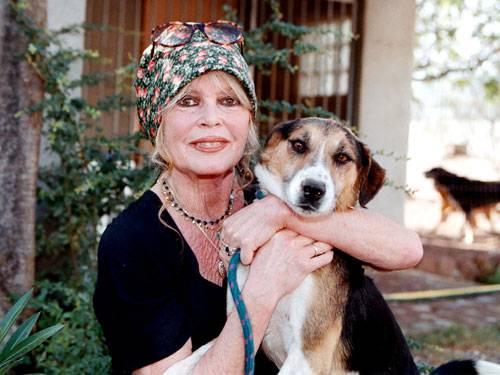 Brigitte Bardot - Von der Lolita zur Tierschützerin