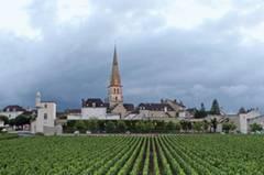 """Das Dorf Mersault an der """"Route des Grands Crus"""""""