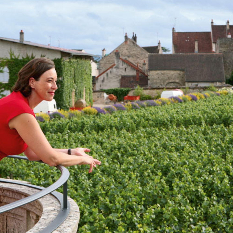 """Traumblick Andrea Hacke auf der großen Terrasse des Hotels """"La Cueillette"""""""