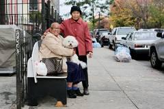 Von Liebe, Verlust und Glück: New York, menschlich gesehen