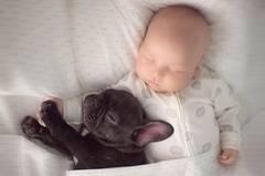 Am selben Tag geboren und unzertrennlich: Baby und Welpe