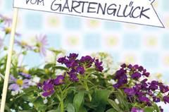 Garten to go: So wird's gemacht