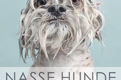 Nasse Hunde (144 S., 16,99 Euro, Riva Verlag).
