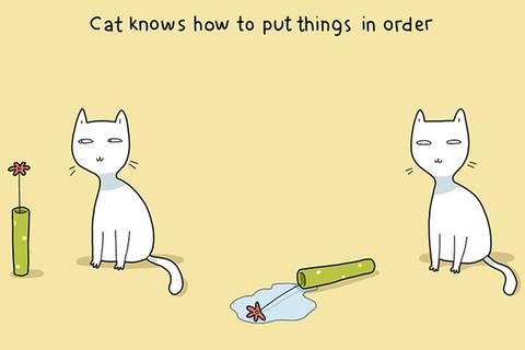 Warum Katzenbesitzer klar im Vorteil sind ...