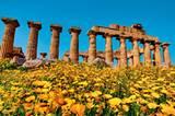 Dieser Tempel in Selinunt im Osten ist der Götting Hera geweiht - der Himmelsgöttin.