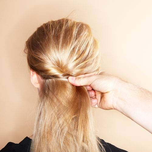 Wilder Chignon: Step 1