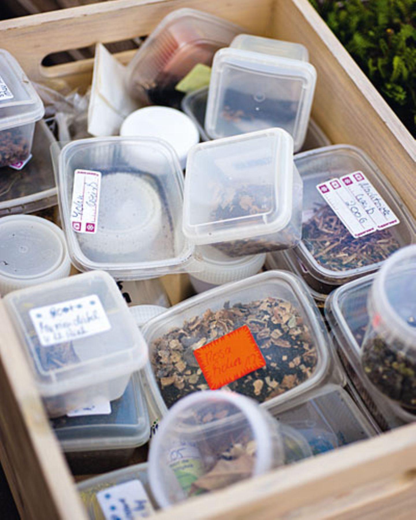 Weil gutes Saatgut teuer ist, sammelt Ursula Berger die Samen von ihren Pflanzen und verwahrt sie in ausrangierten Kunststoffschachteln.