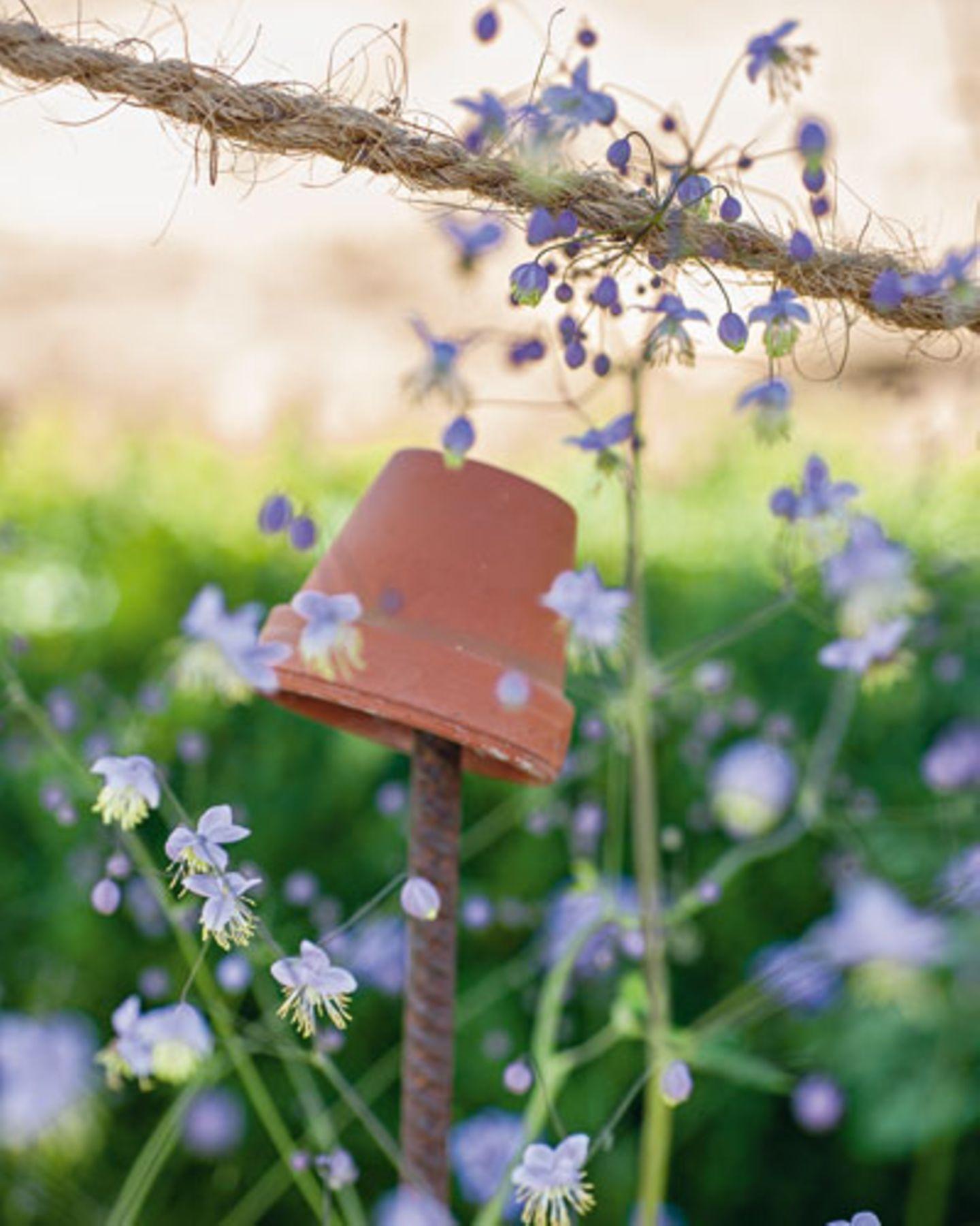Auch für die Nützlinge ist gesorgt: Unter dem Topf, einer so genannten Ohrenkneifermütze, finden Garteninsekten Schutz