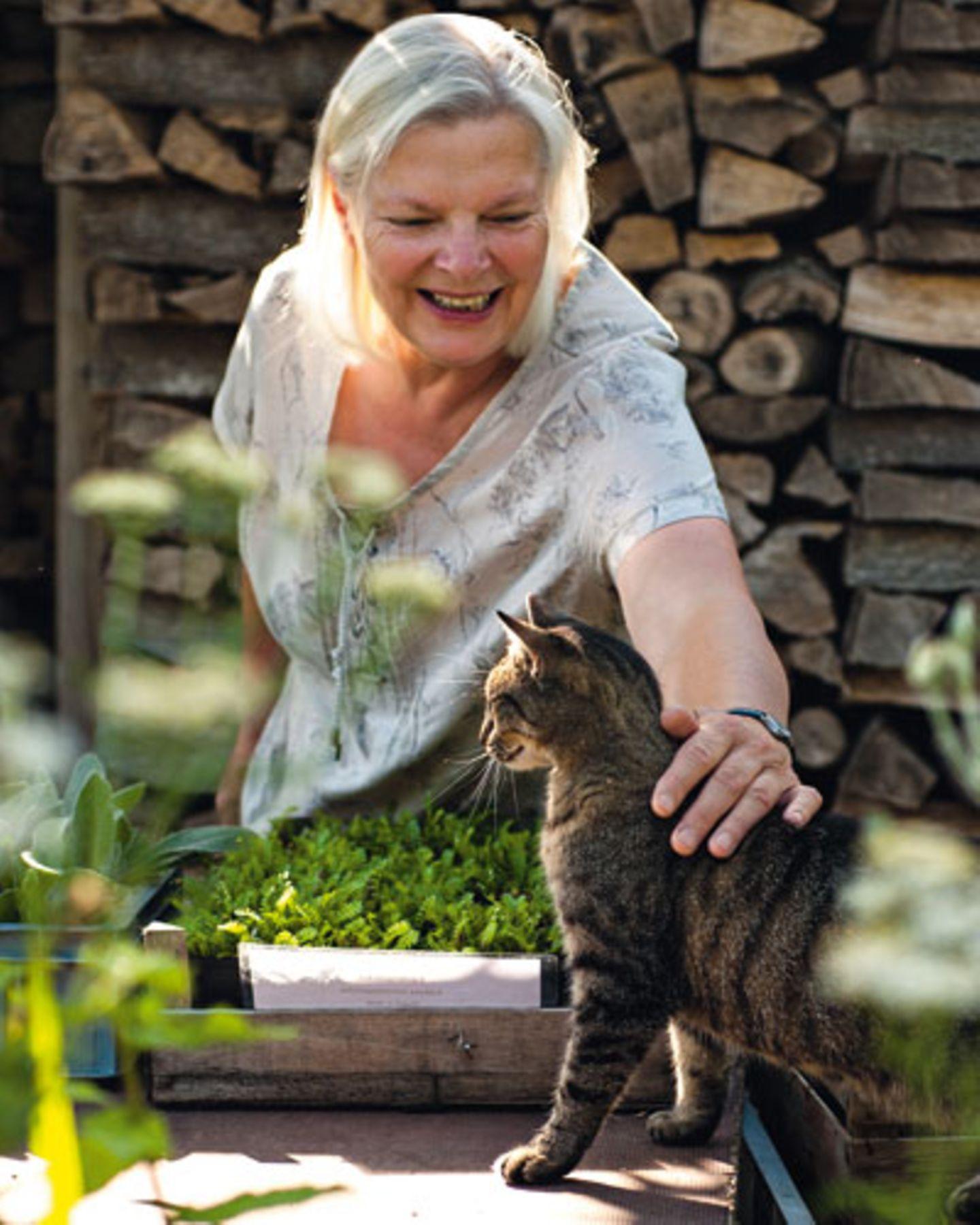 Am Pflanztisch schaut Katze Tessa, was Frauchen so treibt