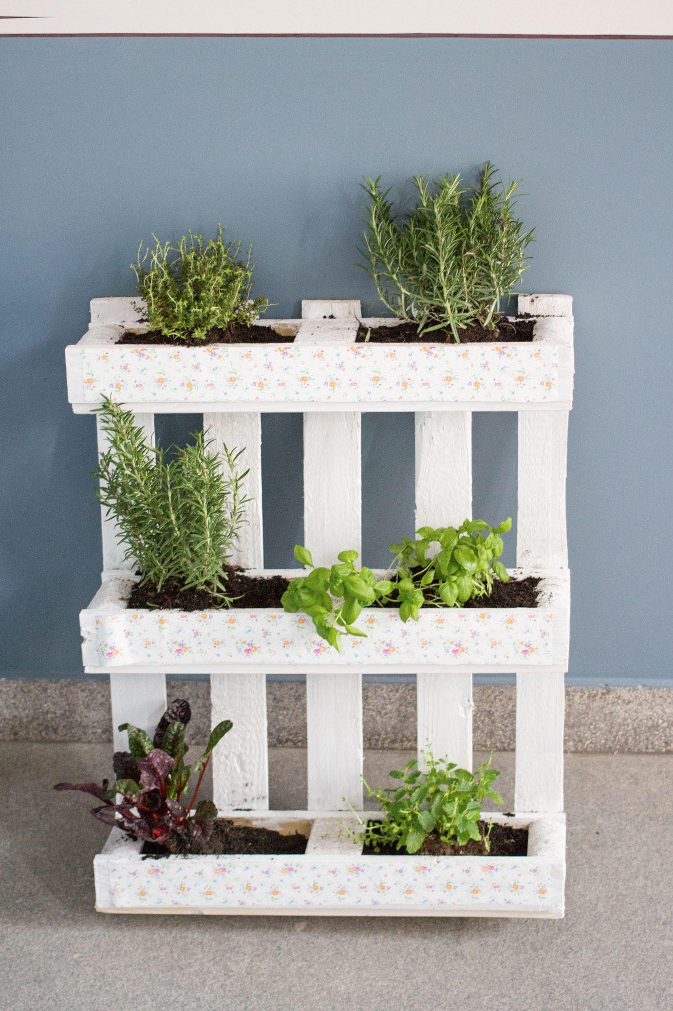 kein balkon?: indoor-gardening - platz für grünes ist in der