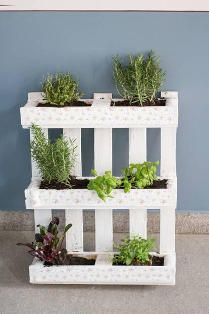Kein Balkon Indoor Gardening Platz Fur Grunes Ist In Der
