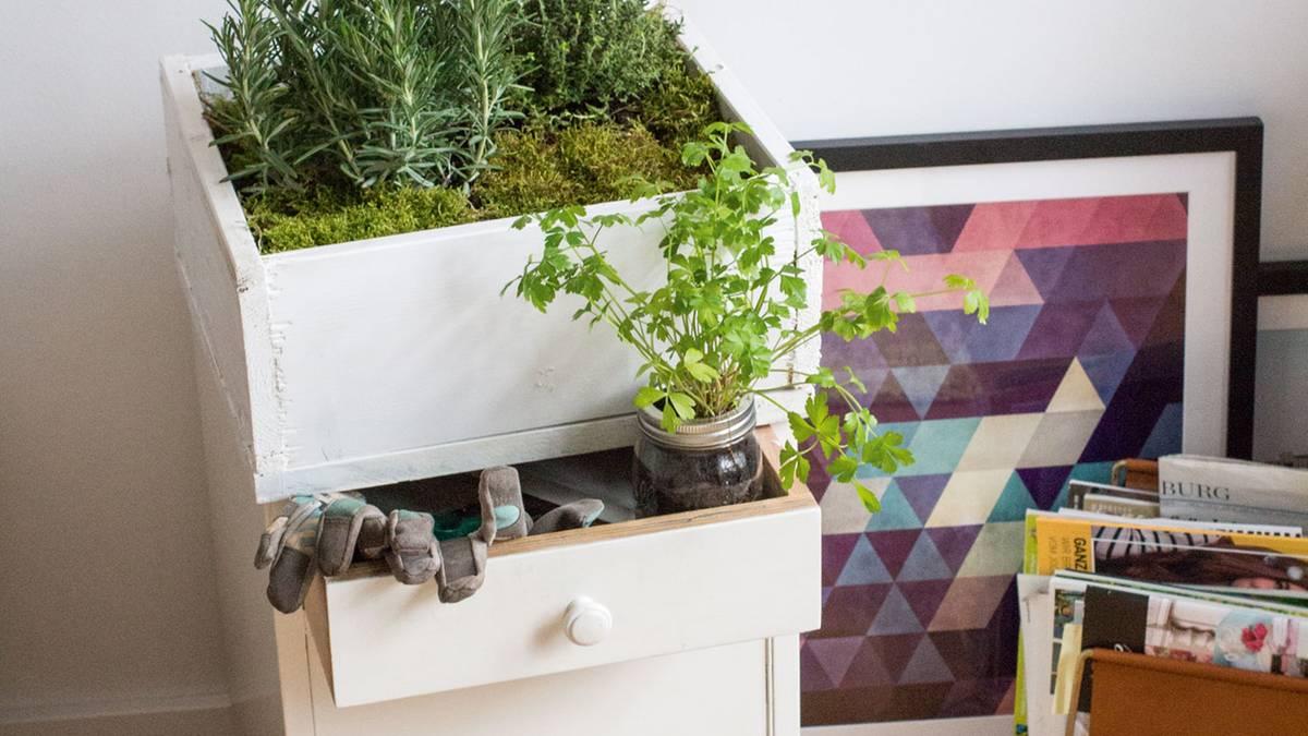 Indoor Garten Wohlfuhloase Wohnung Begrunen ~ Möbel Ideen ...