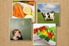 Ernährungsformen: Von Trennkost bis Makrobiotik