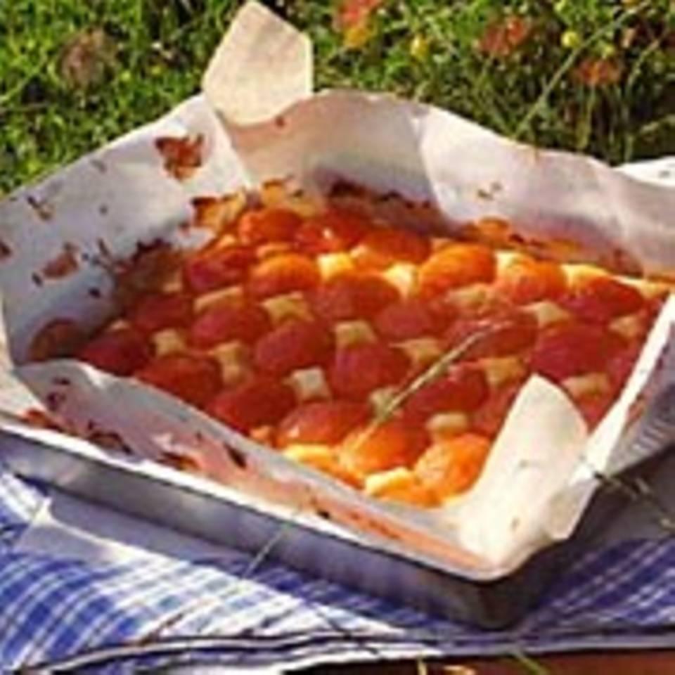 Aprikosen-Quark-Kuchen
