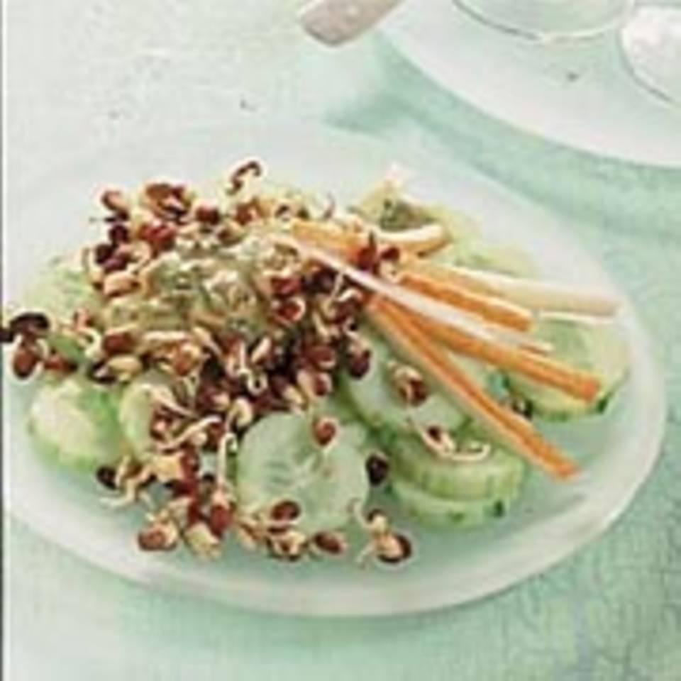 Gurken-Sprossen-Salat mit Surimi