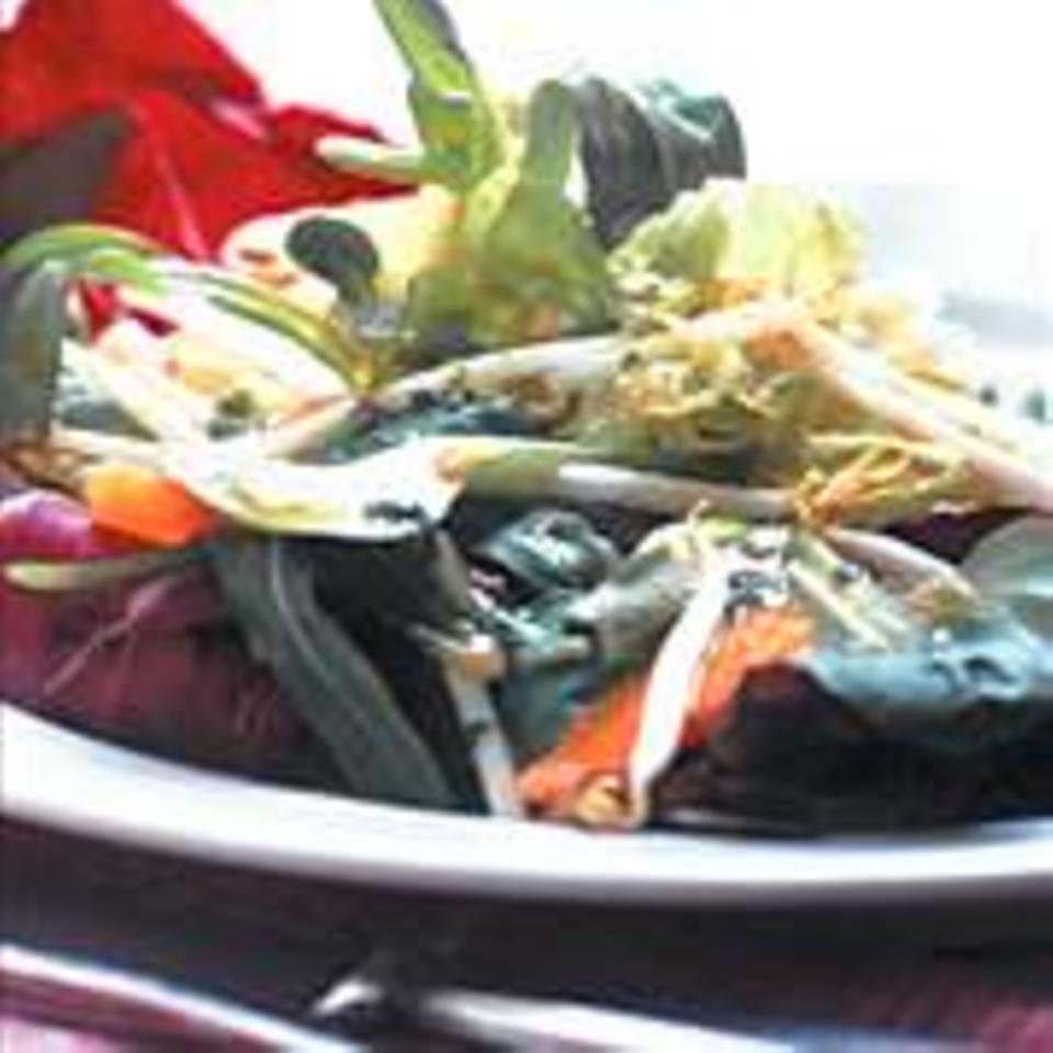 Blattsalat mit Sprossen