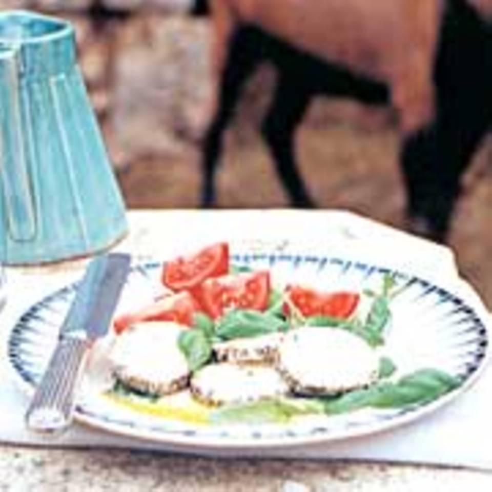 Ziegen-Frischkäse mit Tomaten und Basilikum