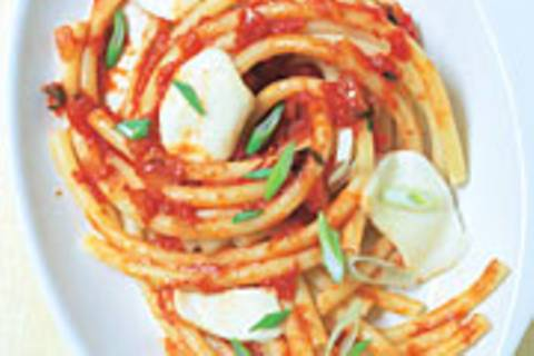 Makkaroni mit scharfem Tomatensugo und Mozzarella