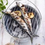 makrele-vom-grill-500.jpg