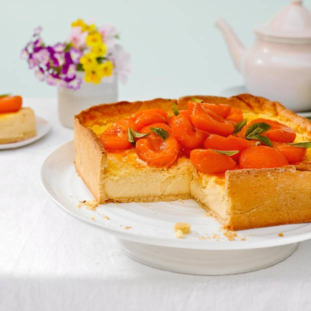 Aprikosen Schmand Torte Brigitte De