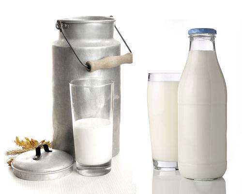 Diät Wissen Getränke Duell Wo Stecken Weniger Kalorien Drin