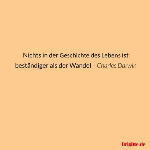 Sprüche: Schöne Zitate zum Jahresbeginn | BRIGITTE.de