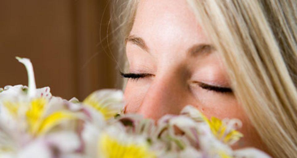 Parfüm: Kleine Duftkunde