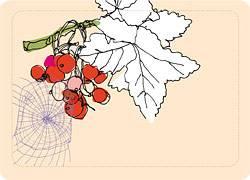 Einkochen: Etiketten für Marmelade zum Ausdrucken