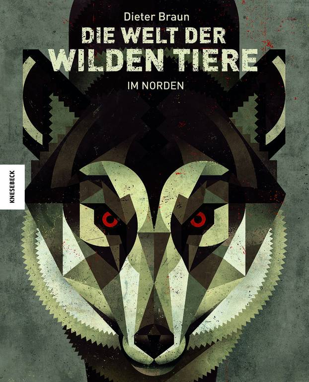 Bilderbuch Von Dieter Braun So Schön Habt Ihr Wilde Tiere Noch Nie