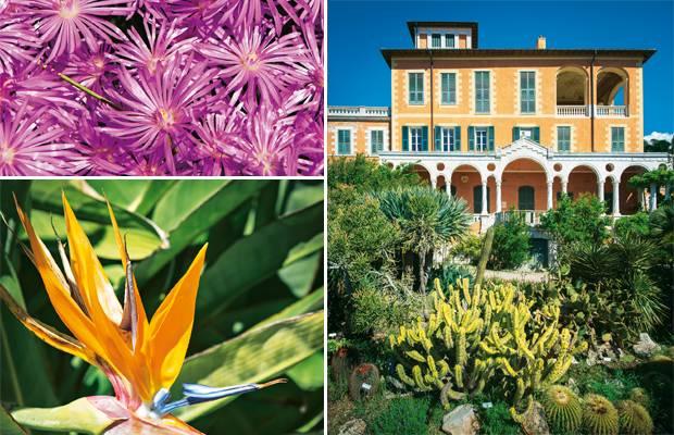 Garten-Reise: Giardini Botanici Hanbury