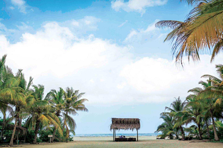 Kolumbien: Urlaub wie im Rausch