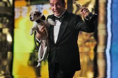 """... Jean Dujardin als charmantem Hauptdarsteller George Valentin (im Bild mit Filmhund Uggie, der auch eine wichtige Rolle hat). Dass Dujardin das Schicksal seiner Figur ereilt, muss er nicht befürchten. Während Valentins Karriere in """"The Artist"""" bergab geht, als der Tonfilm eingeführt wird, dürfte Dujardins Oscar-Gewinn seine Karriere beflügeln. Wir finden: Schön, dass sich die Academy weltoffen gezeigt und einen Franzosen als besten Hauptdarsteller ausgezeichnet hat - zum ersten Mal in der Oscar-Karriere. Und nicht traurig sein, lieber George Clooney, bestimmt werden Sie bald wieder von einem Goldjungen heimgesucht."""