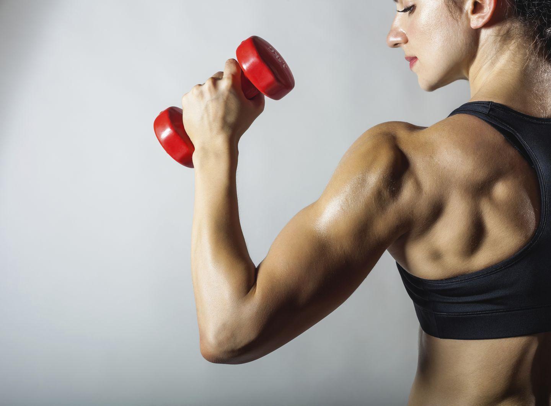 1. Irrtum: Bloß keine Muskelmasse aufbauen!