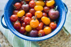 Mediterrane Diät: Mini-Tomaten in einer Schüssel