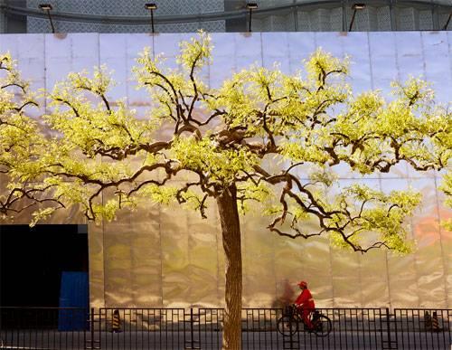 Beijing Spring