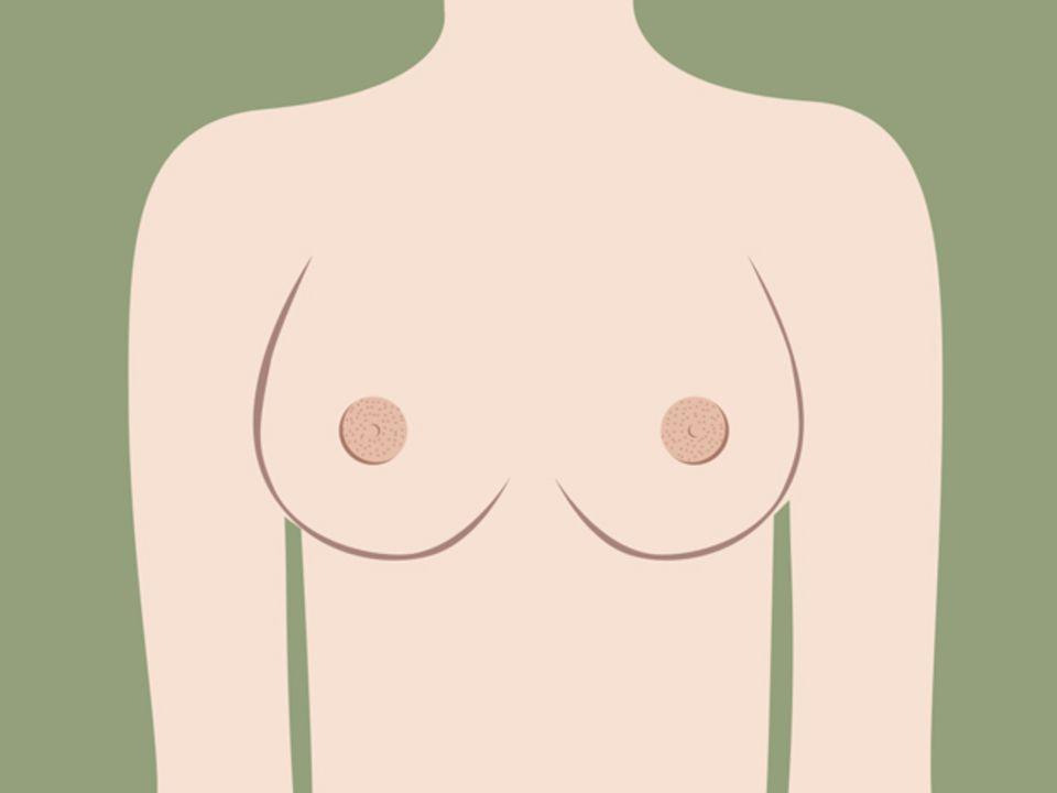 Sehen eure Brustwarzen normal aus?