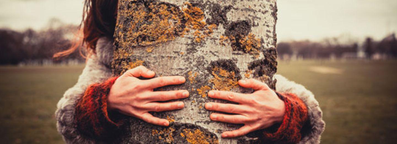 """Frau liebt Baum und hat mit ihm den """"besten Sex"""" ihres Lebens!"""