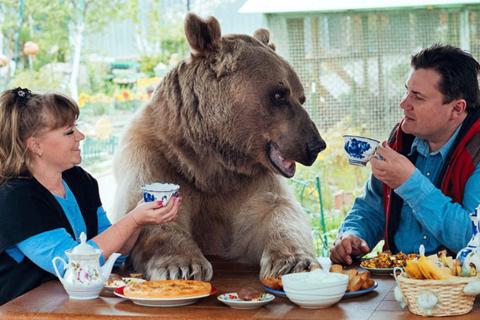 Dieser Bär ist das zotteligste Kuschel-Haustier der Welt!