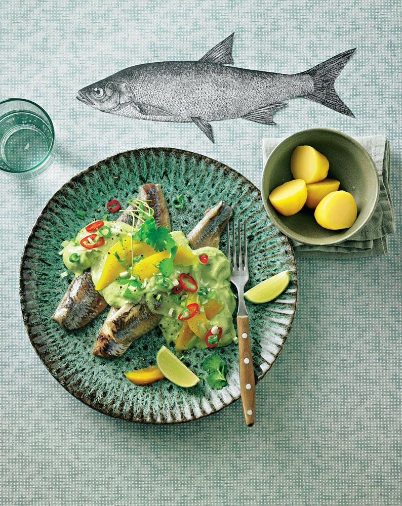 Zur Feier der Saison hat BRIGITTE-Kochprofi Marion Swoboda den Hering geschmacklich in die Karibik geschickt. Tolle Idee! Zum Rezept: Matjes mit Avocado-mango-Creme