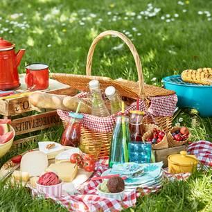 Picknick-Rezepte: Freunde beim Picknick