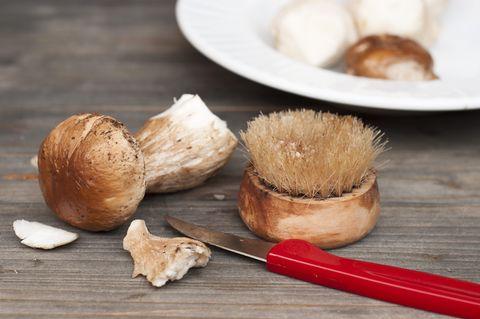 Mit unseren Tipps Pilze richtig säubern