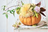 Der leuchtende Muskatkürbis ist ausgehöhlt. Halt finden Blumen, Gräser und Ranken in einem Glas mit Steckschaum. Star bei diesem Arrangement ist die üppige Chrysanthemenblüte.  Material:Kürbis (z. B. kleiner Muskatkürbis), Glas oder Vase, Steckschaum (z. B. www.floral-direkt.de); scharfes Messer sowie scharfkantiger Löffel zum Aushöhlen; Zierpflanzen, die möglichst unterschiedlich sind in Wuchs und Art, z. B. zarte Gräser, markante Einzelblüten, füllende Dolden, weich fallende Rispen, schlanke Ranken. Die Menge der Gewächse ist abhängig von der Größe des Kürbisses. Unser Strauß im Bild: Hortensien, eine große Chrysantheme, buntes Herbstlaub von Pfingstrose, Clematisranke, Rutenhirse, Zierhopfen.    So wird's gemacht:Rund um den Stiel eine Öffnung schneiden, durch die das Glas passen wird, dann das Kürbisfleisch auskratzen. Ein Stück Steckschaum auf Glasmaß zuschneiden, gut mit Wasser tränken, in das Glas setzen. Von den Pflanzen die unteren Blätter entfernen, die Stängel schräg anschneiden und im Glas mit dem Steckschaum arrangieren. Zum Schluss als Blickfang eine möglichst markante Blüte dazustecken.