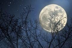 Mondkalender: Mond am Himmel