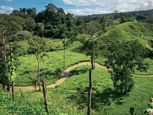 Das Grün der Wiesen auf Osa leuchtet - wie in der Heimat der Hobbits.