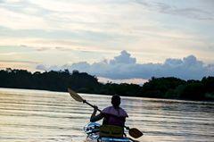 Mit dem Kajak geht's durch die Mangroven, bis die Sonne untergeht.