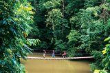 Diese Hängebrücke in der Drake Bay führt zum Strand - und zum Puma?