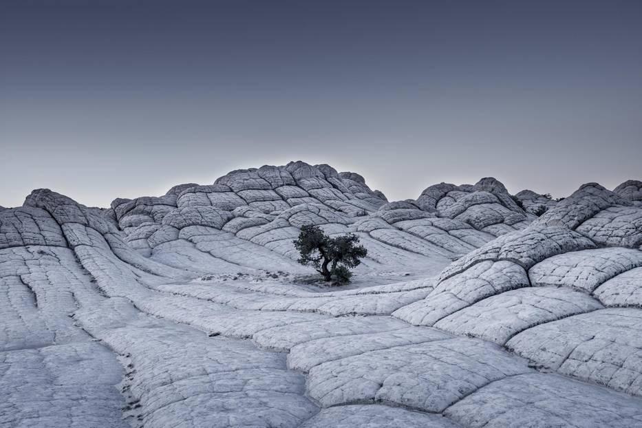 Tom Jacobi, Deutschland (Professional, Landscape)