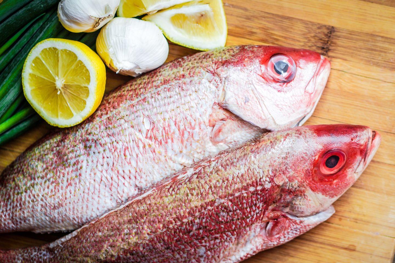 Lebensmittel-Skandal: 11 Deutsche durch Fisch vergiftet!